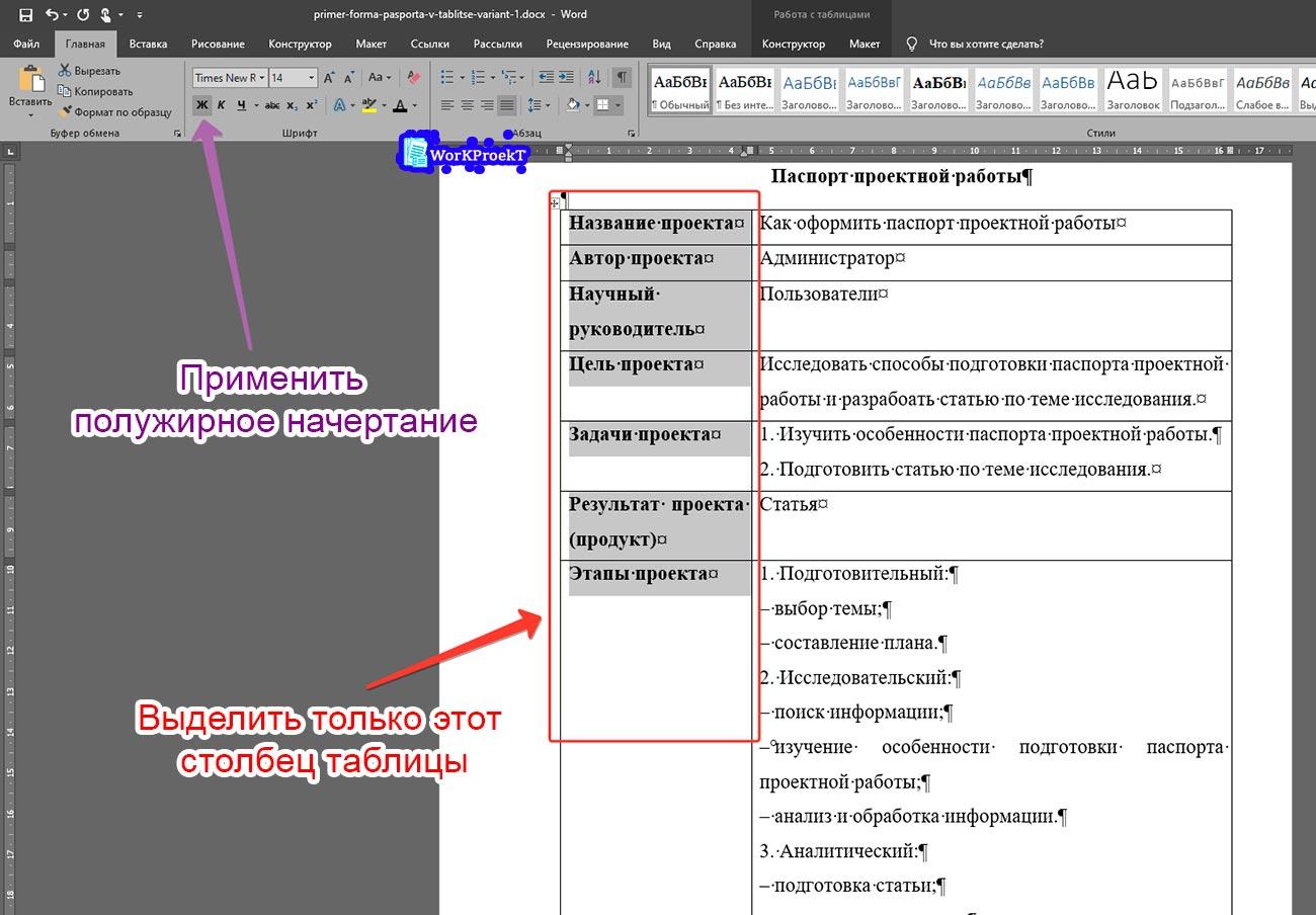 Выделение части текста паспорта проектной работы оформленного в таблице